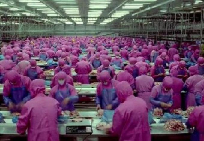 proizvodnja-hrane
