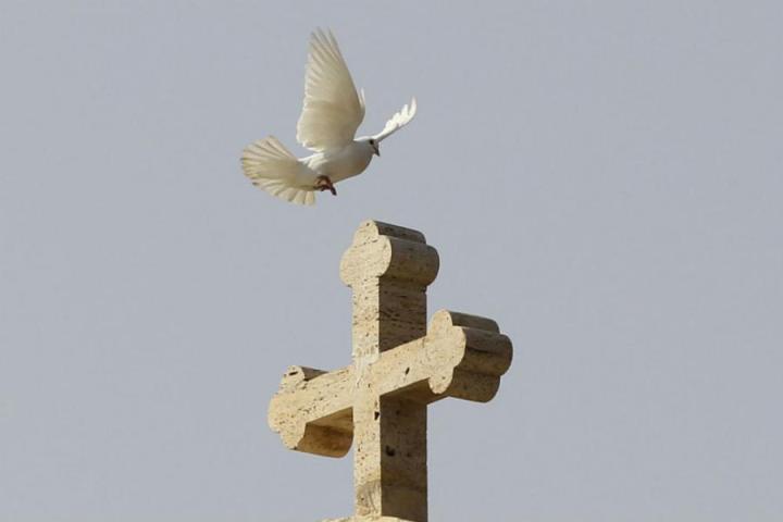 krst-golub-kriz-reuters