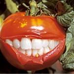 gmo-paradajiz